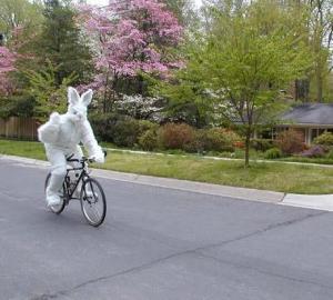 Wünsch euch alle Frohe Ostern viel Spaß beim Radln .... Geschlossen vom 25.März bis 28.März 2016 Ab Dienstag den 29März bin ich wie immer für euch da ! Liebe Grüße DIDI